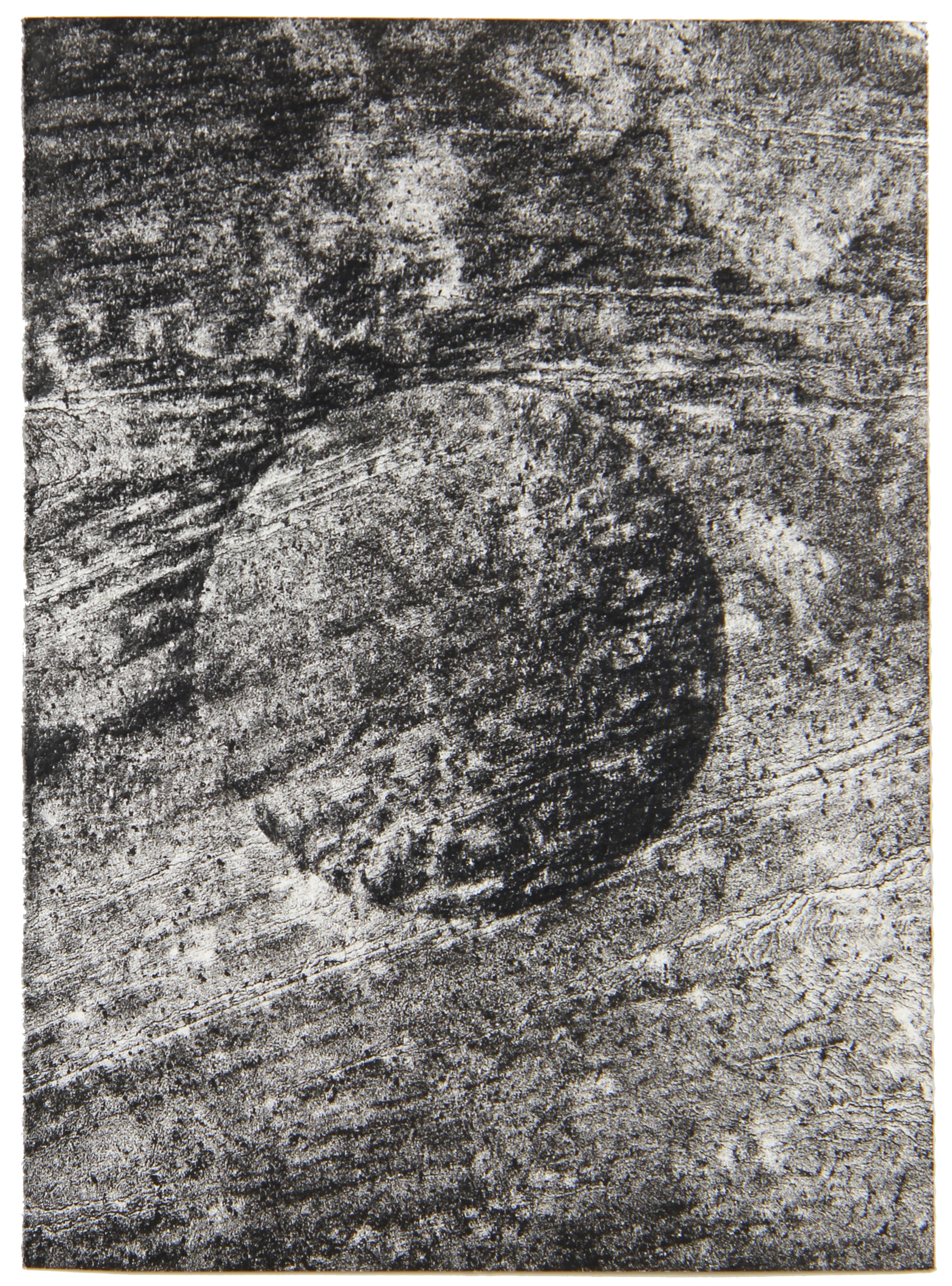 Circle 148 x 105 cm gemengde techniek op papier 2021