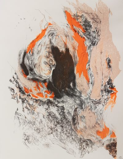 Synthesis I, 2017, litho kleur, 42,5 x 32 cm