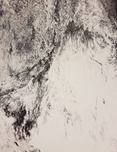 Synthesis II, 2017, litho, 76 x 57 cm