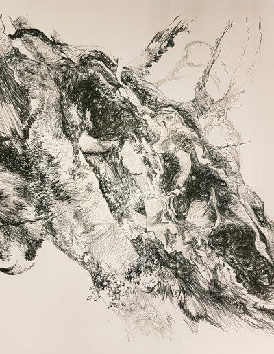 Synthesis IV, 2019, litho, 57 x 76 cm