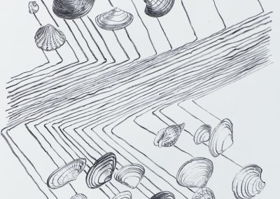 Shells of one day 2017 litho 33x50cm